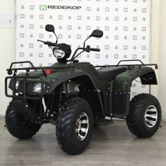 ЭЛЕКТРО ATV CODIAK 5000